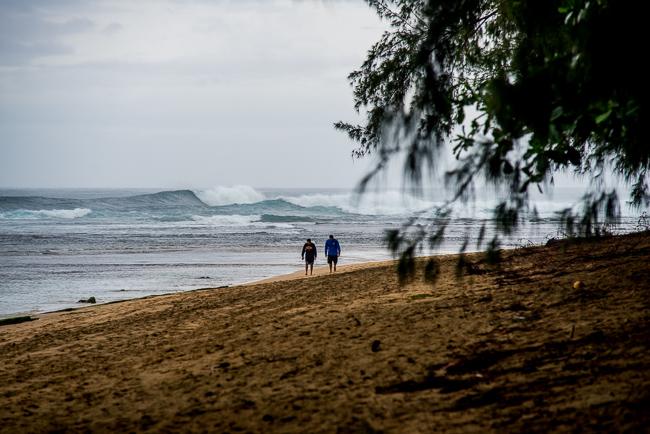 Kauai-Travel-2013-ryanbenoitphoto-thehorticult-RMB_4288