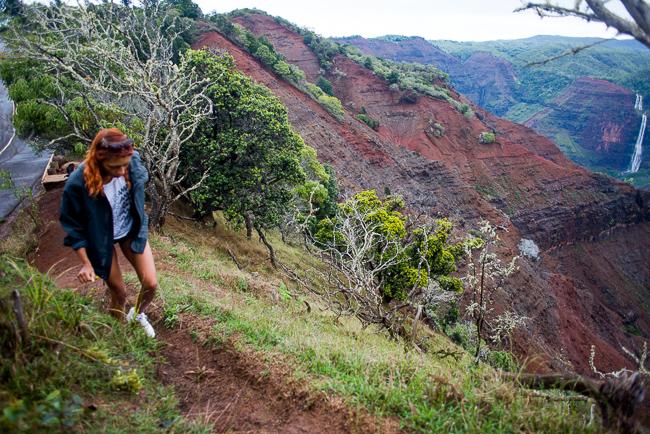 Kauai-Travel-2013-ryanbenoitphoto-thehorticult-RMB_4368