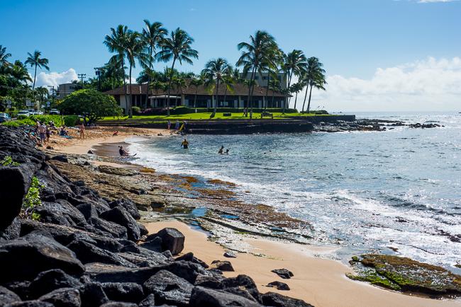 Kauai-Travel-2013-ryanbenoitphoto-thehorticult-RMB_4662