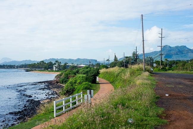 Kauai-Travel-2013-ryanbenoitphoto-thehorticult-RMB_5009