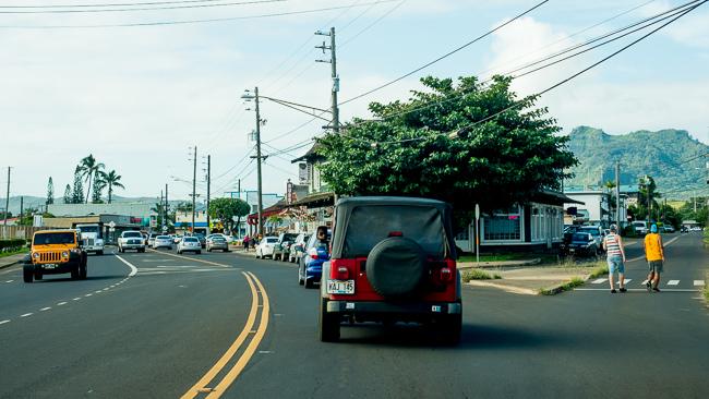 Kauai-Travel-2013-ryanbenoitphoto-thehorticult-RMB_5011