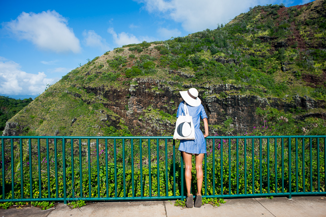 Kauai-Travel-2013-ryanbenoitphoto-thehorticult-RMB_5016