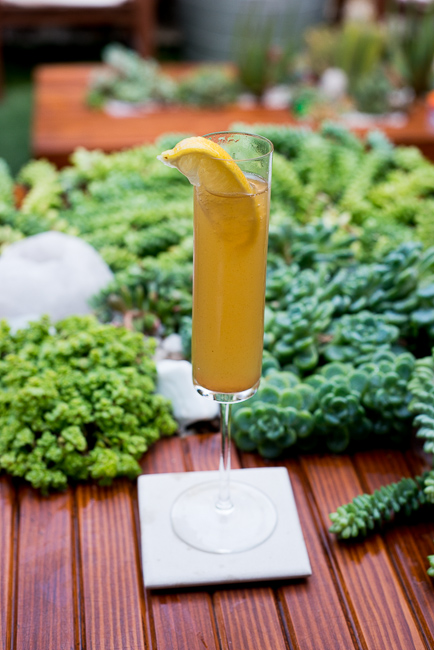 Lady-Ginger-winter-drink-cocktail-menu-ryanbenoitphoto-thehorticult-RMB_5704
