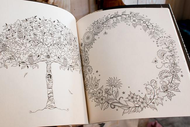 Secret Garden, An Inky Treasure Hunt and Coloring Book - $14.95  Secret Garden, An Inky Treasure Hunt and Coloring Book http://www.shoppigment.com/secret-garden-an-inky-treasure-hunt-and-coloring-book/