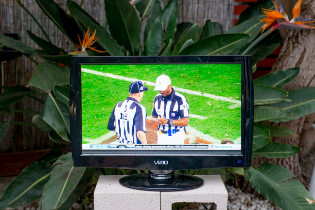Garden-Super-Bowl-Party-ryanbenoitphoto-thehorticult-RMB_6995