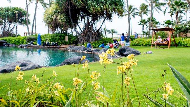 Grand-Hyatt-Poipu-Kauai-Travel-2013-ryanbenoitphoto-thehorticult-RMB_3646