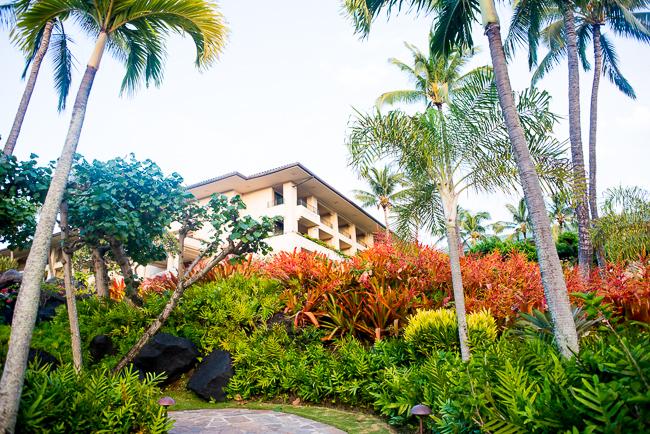 Grand-Hyatt-Poipu-Kauai-Travel-2013-ryanbenoitphoto-thehorticult-RMB_4635