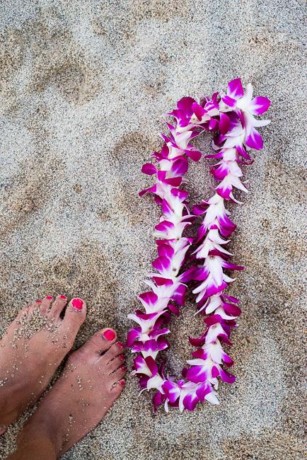 Grand-Hyatt-Poipu-Kauai-Travel-2013-ryanbenoitphoto-thehorticult-RMB_4644