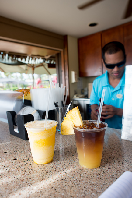 Kauai-Travel-2013-ryanbenoitphoto-thehorticult-RMB_3620