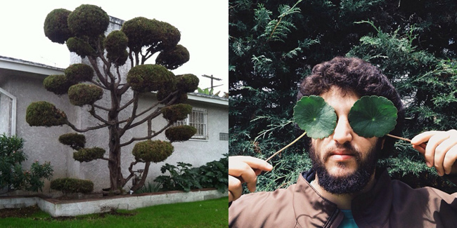 Plants & People 3 @mrtonybrown and @alfonsoxavier-featured-on-thehorticult