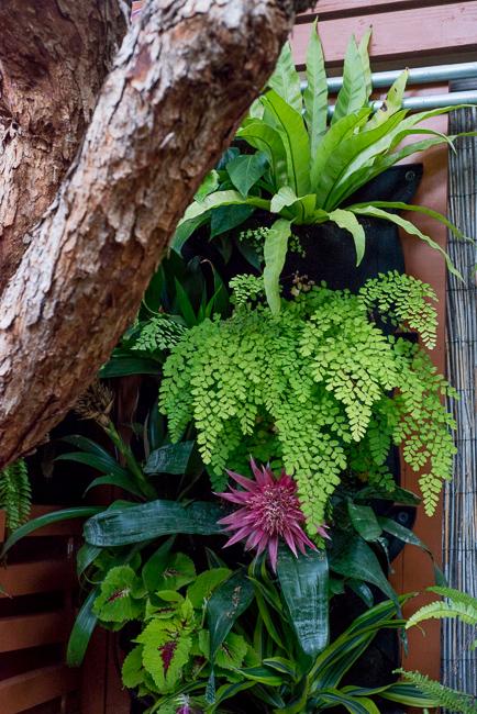 The Horticult Garden Tour - The Guava Tree Room - Ryan Benoit Design - Shade Wall