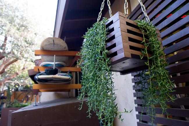 The Horticult Garden Tour - The Fireside Room - Ryan Benoit Design - String of bananas