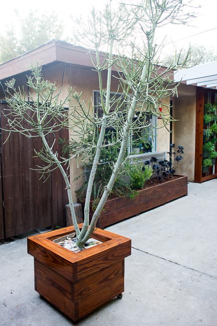the-horticult-garden-tour-Ryan-Benoit-design-RMB_6370