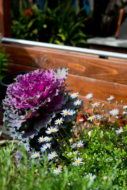 20-things-spring-ryanbenoitphoto-thehorticult-RMB_7703