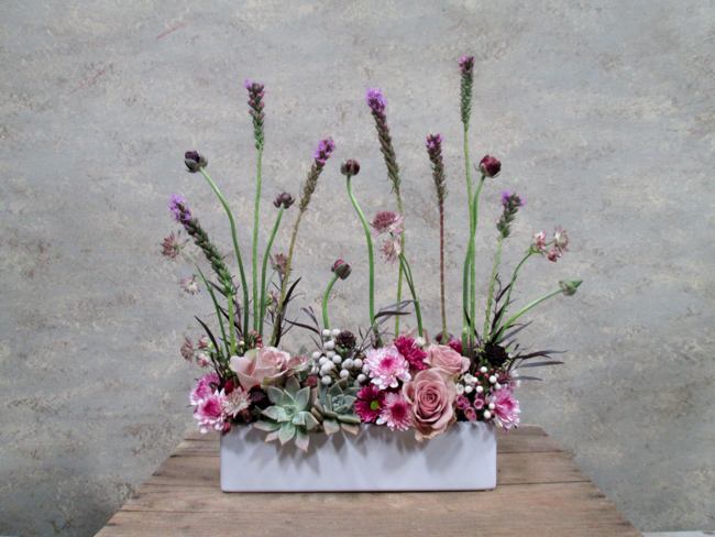 Dandelion-Ranch-Purple Screen with Succulents (2)-featured-on-thehorticult