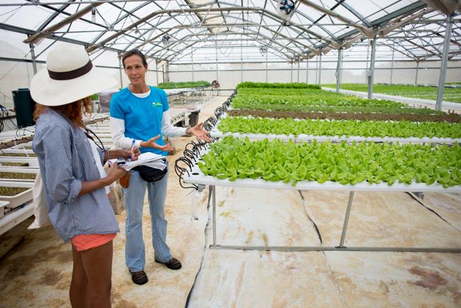 Kauai-Fresh-Farms-ryanbenoitphoto-thehorticult-RMB_4857