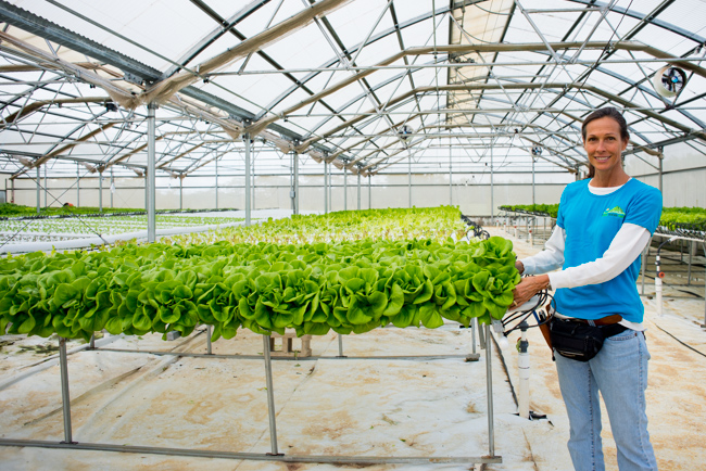 Kauai-Fresh-Farms-ryanbenoitphoto-thehorticult-RMB_4871