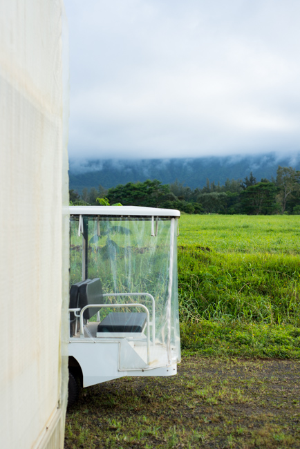 Kauai-Fresh-Farms-ryanbenoitphoto-thehorticult-RMB_4889