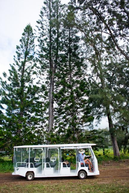 Kauai-Travel-2013-ryanbenoitphoto-thehorticult-RMB_4739