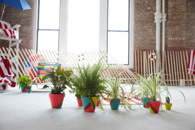 The Sill for Warby Parker-featured-on-thehorticult