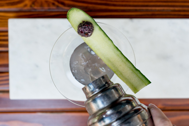 Garden-eats-Christine-Dionese-mixology-the-horticult-ryanbenoitphoto-thehorticult-RMB_9224