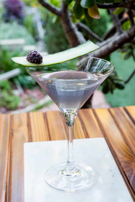 Garden-eats-Christine-Dionese-mixology-the-horticult-ryanbenoitphoto-thehorticult-RMB_9239