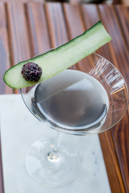 Garden-eats-Christine-Dionese-mixology-the-horticult-ryanbenoitphoto-thehorticult-RMB_9240