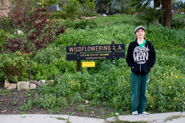 Eddy planted seeds at Wildflowering L.A. Site 42.