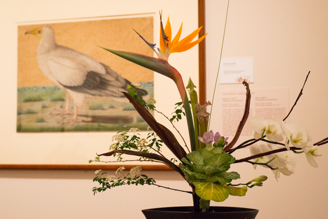 Art-Alive-2014-Floral-Interpretations-Best-of-ryanbenoitphoto-thehorticult-RMB_0880