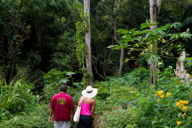 National-Tropical-Botanical-Garden-NTBG-Kauai-ryanbenoitphoto-thehorticult-RMB_5133