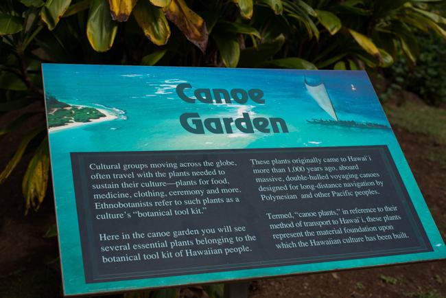 National-Tropical-Botanical-Garden-NTBG-Kauai-ryanbenoitphoto-thehorticult-RMB_5191
