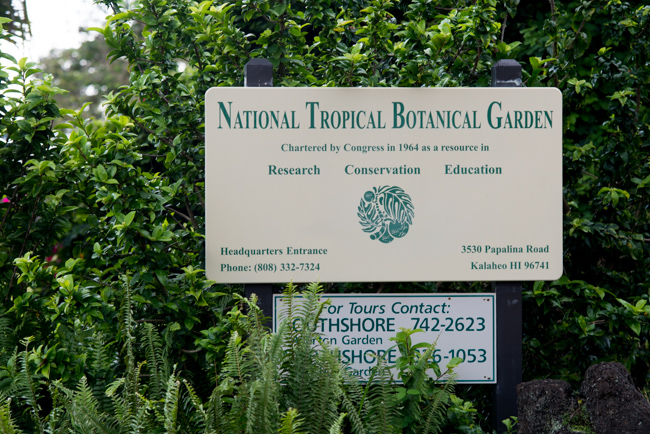 National-Tropical-Botanical-Garden-NTBG-Kauai-ryanbenoitphoto-thehorticult-RMB_5343