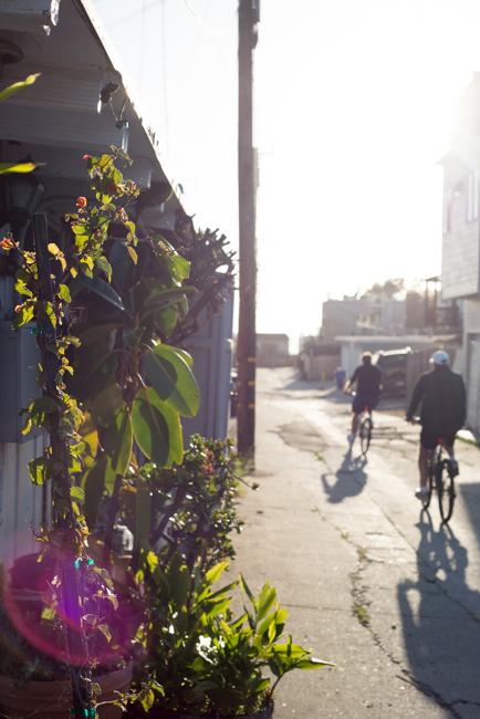 Windansea alley.