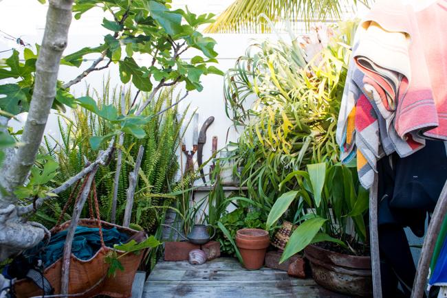 cristiana-joe-windansea-garden-tour-ryanbenoitphoto-thehorticult-RMB_9933