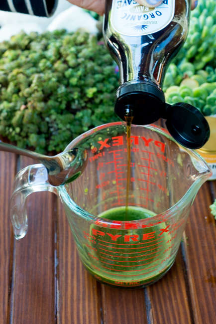 matcha-green-tea-latte-ryanbenoitphoto-thehorticult-RMB_1529