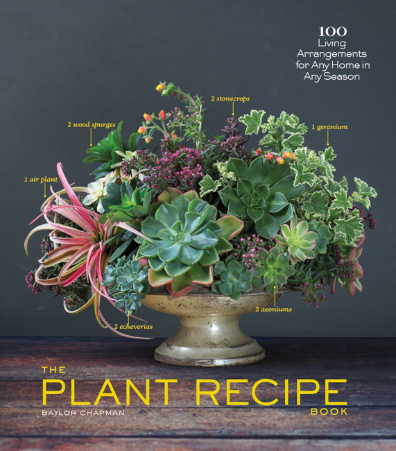 Jacket. The Plant Recipe Book. Photograph by Paige Green