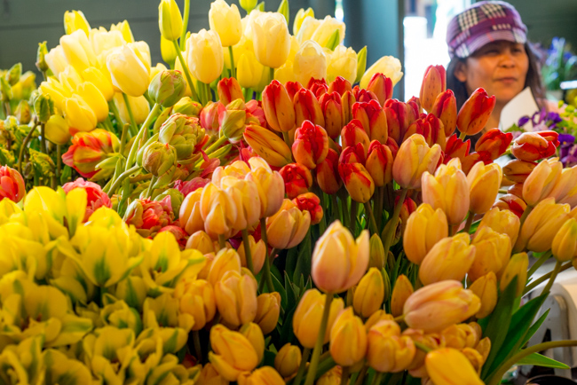 Pike-Place-Market-Flowers-Mothers-Day-ryanbenoitphoto-thehorticult-RMB_1397