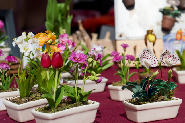 Pike-Place-Market-Flowers-Mothers-Day-ryanbenoitphoto-thehorticult-RMB_1443