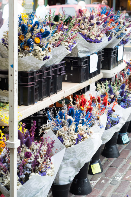 Pike-Place-Market-Flowers-Mothers-Day-ryanbenoitphoto-thehorticult-RMB_2144