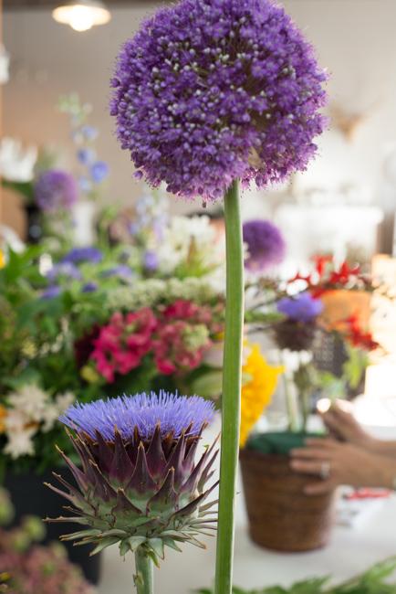 Isari-Flower-Studio-Dutch-Masters-ryanbenoitphoto-thehorticult-RMB_3396