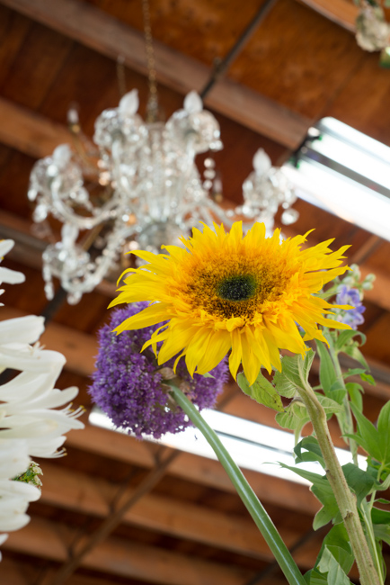 Isari-Flower-Studio-Dutch-Masters-ryanbenoitphoto-thehorticult-RMB_3426
