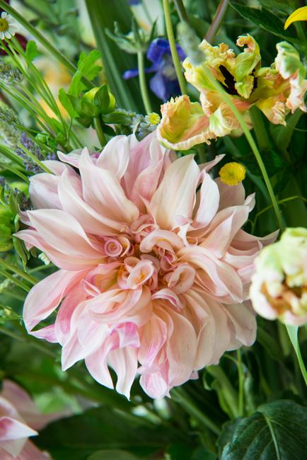 Isari-Flower-Studio-Dutch-Masters-ryanbenoitphoto-thehorticult-RMB_3650