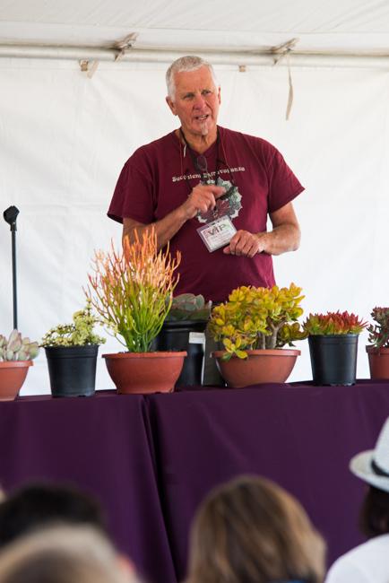 Robin Stockwell of Succulent Gardens