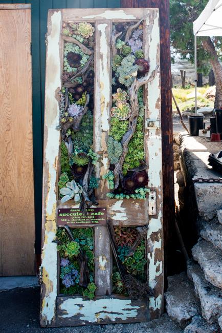 Peter Loyola's succulent door. Succulent Cafe
