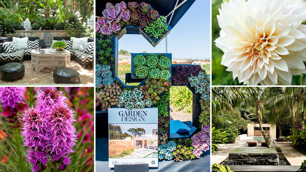Garden Magazines Free Relaunch the editor of garden design on the new issue outdoor relaunch the editor of garden design on the new issue outdoor screens and going ad free sisterspd