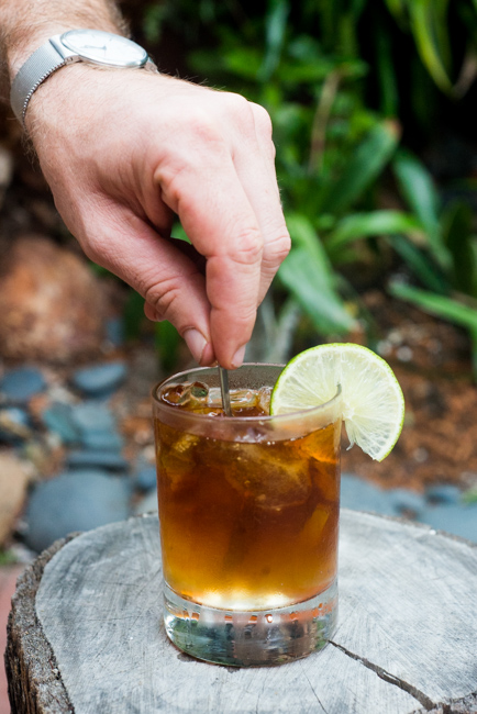 Summer-Cocktail-Week-Dark-and-Stormy-thehorticult-RMB_6905