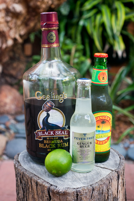 Summer-Cocktail-Week-Dark-and-Stormy-thehorticult-RMB_7113