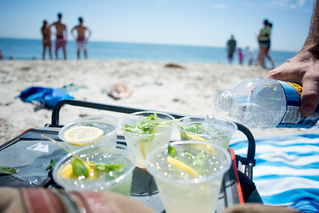 Summer-Cocktails-Minted-Vodka-Lemonade-To-Go-ryanbenoitphoto-thehorticult-RMB_5909