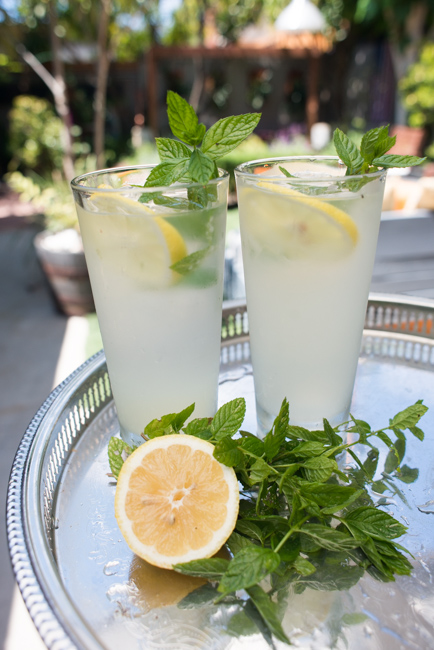 Summer-Cocktails-Minted-Vodka-Lemonade-To-Go-ryanbenoitphoto-thehorticult-RMB_6955