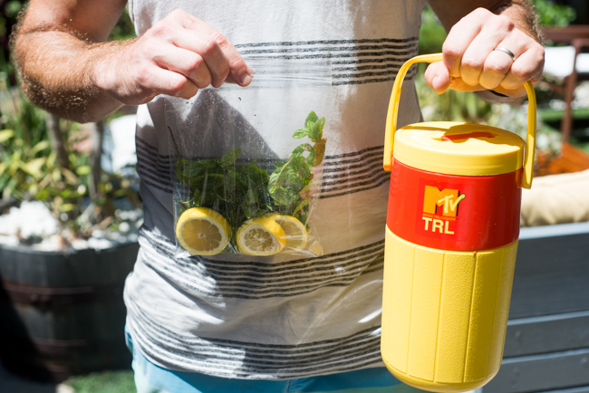 Summer-Cocktails-Minted-Vodka-Lemonade-To-Go-ryanbenoitphoto-thehorticult-RMB_6965